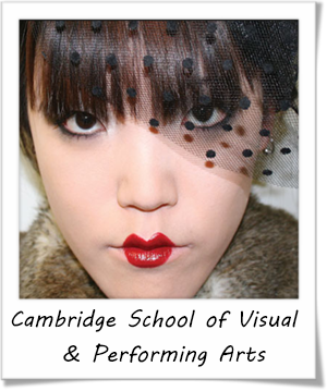 Cambridge School of Visual & Performing Arts (CSVPA)